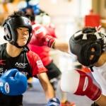 ボクシング (14)