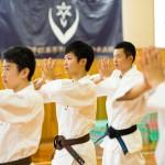 少林寺拳法 (20)